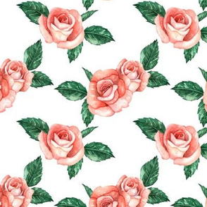 Red Garden Roses // White (Small Scale)