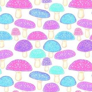 Pretty Mushrooms