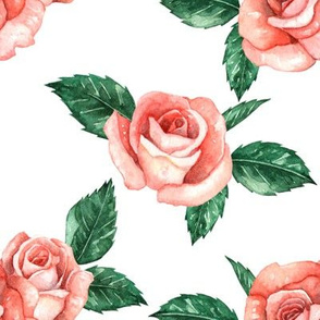 Red Garden Roses // White (Large Scale)