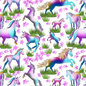 Unicorns_on_White