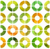 Watercolor Rings - Citrus