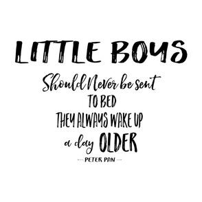 """21""""x18"""" Little Boys Quote / FAT QUARTER"""