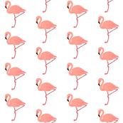 Flamingo Friends