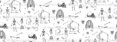 Skeletons Oh My