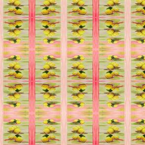 Lemon Square Stripes