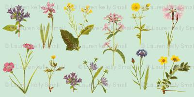 Antique Wildflowers, Bright Duckegg Green