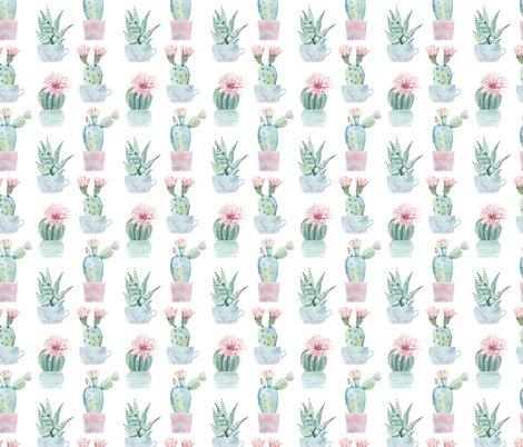 Rcute_potted_succulents_shop_preview