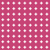 fuchsia rose cross +