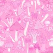 Mushroom Hunt in Pink