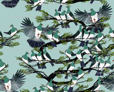 Kereru on turquoise sky - black branches