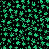 Tiny Marijuana Leaf