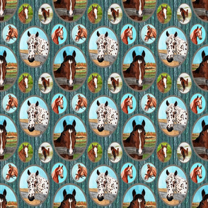 horse_portraits_barn_boards_teal_6x6