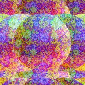 BLOSSOMS SEASON PURPLE ORANGE IMAGINARY PLANET