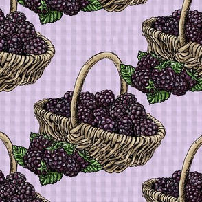 Blackberry Baskets - Lavender Gingham - Large Scale
