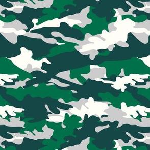 C10 - camouflage