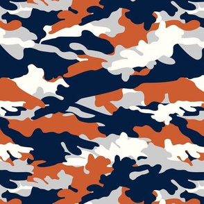 C6- camouflage