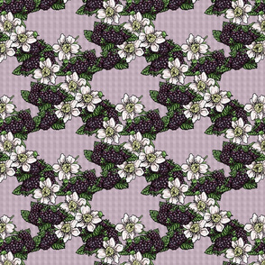 Blackberries and Flowers - Lavender Gingham - Large Scale