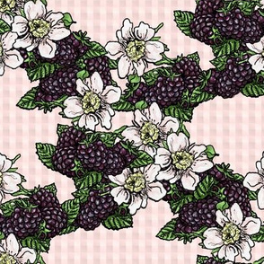 Blackberries and Flowers - Light Pink Gingham - Small Scale