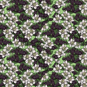 Blackberries and Flowers Tossed - Moss Green Gingham - Small Scale