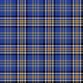 Ruxton dress tartan, 6""