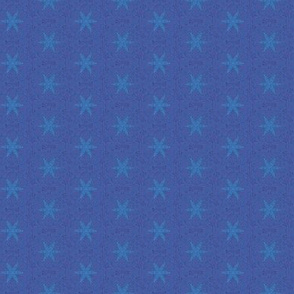 Starfish on royal blue