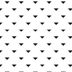 Black and White Geometric 13