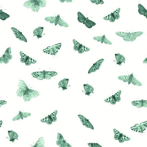 Butterflies in Ivory and Seafoam