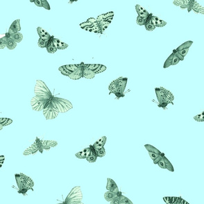 Mint and Blue Butterflies