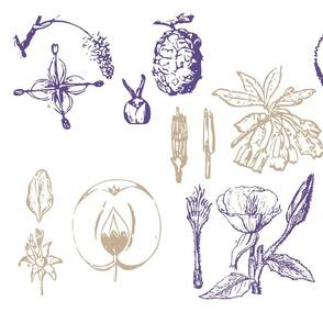 Vintage_Botanical_Block_Print_purple_and_tan