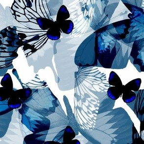 Butterflies - Blue