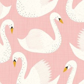 swimming swans on pink
