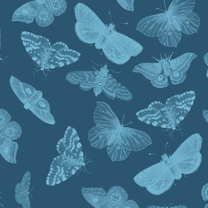 Cyanotype Blue Butterflies