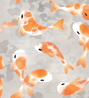 Japanese Koi Fish - Extra Small