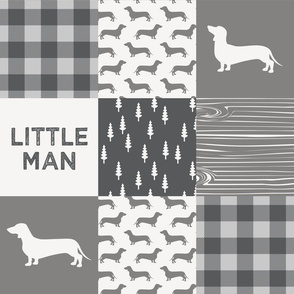 Little Man - Dachshund / Weiner dog - Grey