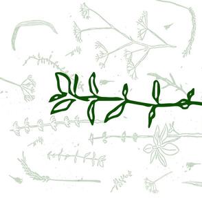 botanic tea towel