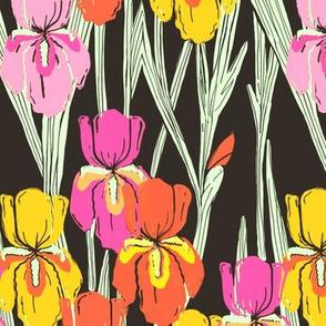 Retro irises