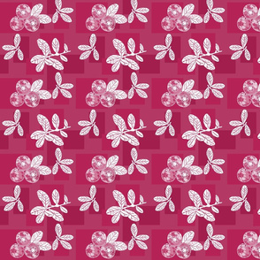 Cranberry Red Block Print
