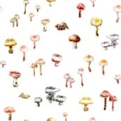 Rrmushrooms_colour_7cm_repeat_shop_thumb