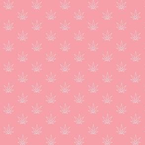 Pot pattern-Pink
