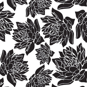 LARGE_WATERLILIES_BLACK_TEA TOWEL