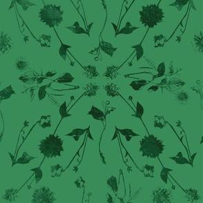 Dozens of Dahlias -Green Green