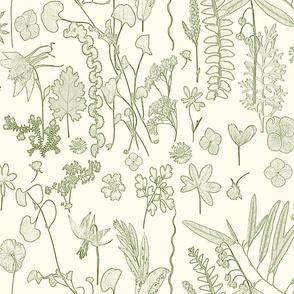 Collectors Garden green on cream