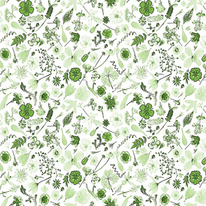 Wildflowers green n white