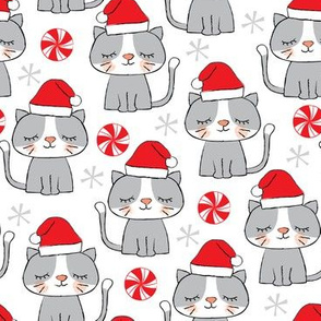 christmas-kitties on white