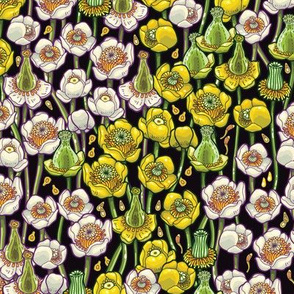 waterlily pattern