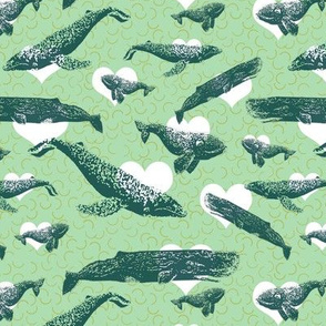 Prints of Whales Love