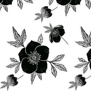 Christmas Rose Botanical (Teatowel)