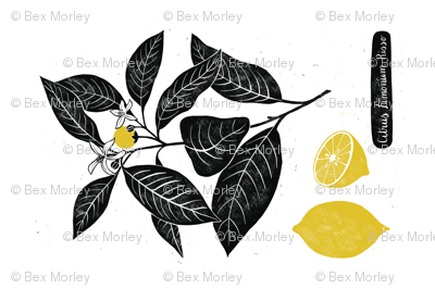 Citrus Limonum Tea Towel