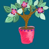 Shar Shar Tree