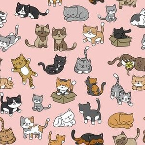 Cat Doodles on Pink